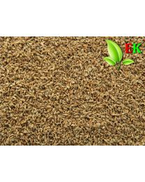 Anijs vrucht Extra kwaliteit 500 gram (ten minsten houdbaar tot 12-2020)