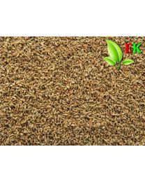 Anijs vrucht Extra kwaliteit 250 gram (ten minsten houdbaar tot 12-2020)