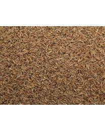Karwij-Kummel-zaad 250gram (ten minsten houdbaar tot 10-2019)