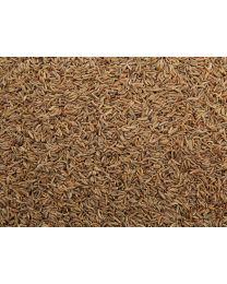 Karwij-Kummel-zaad 1000 gram (ten minsten houdbaar tot 10-2019)