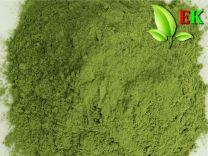 Gerstengras Extra kwaliteit 500 gram (tenminste houdbaar tot 02-2021)