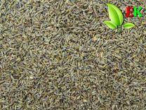 Lavendel Extra kwaliteit