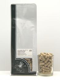 Engelwortel capsules 295 stuks