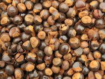 Guarana zaad 500 gr  (ten minste houdbaar tot 03-2022)